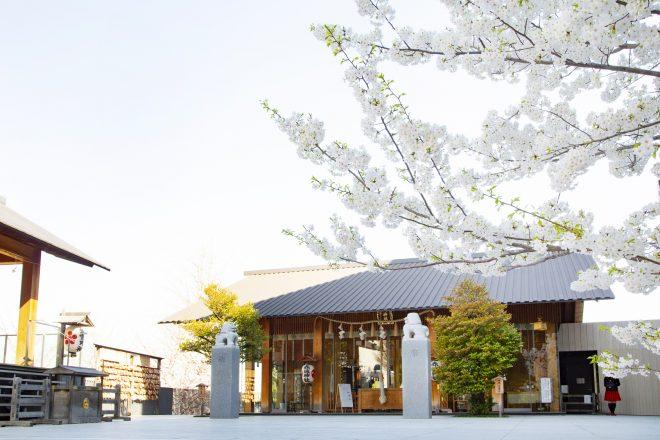新宿区の高級住宅街のイメージ
